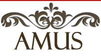 Herbata sklep, przyprawy świata, kawa rozpuszczalna - Amus Premium Food